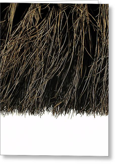 Bristles Greeting Cards - Broom Head Bristles Greeting Card by Kevin Curtis