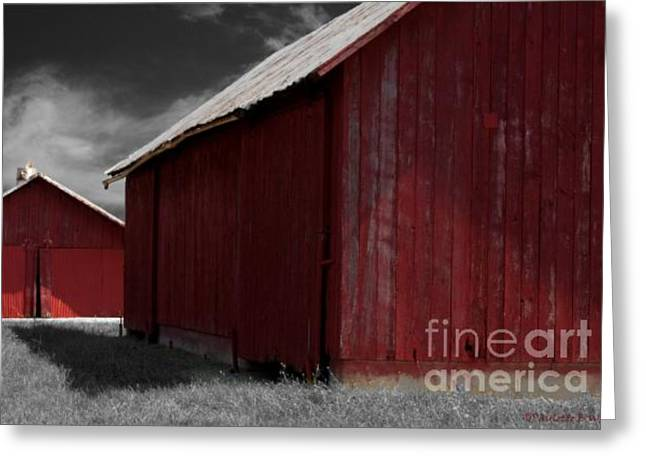Tin Roof Greeting Cards - Brothers In Red Greeting Card by Paulette B Wright