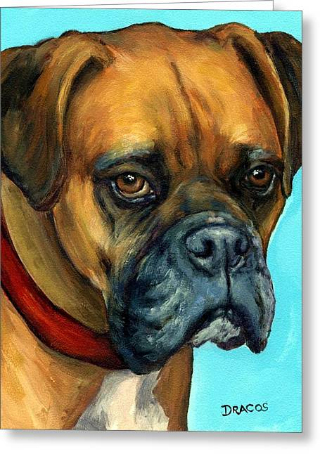 Boxer Greeting Cards - Brown Boxer on Turquoise Greeting Card by Dottie Dracos