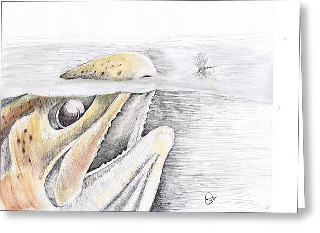 Trout Mixed Media Greeting Cards - Brown Trout  Greeting Card by H C Denney