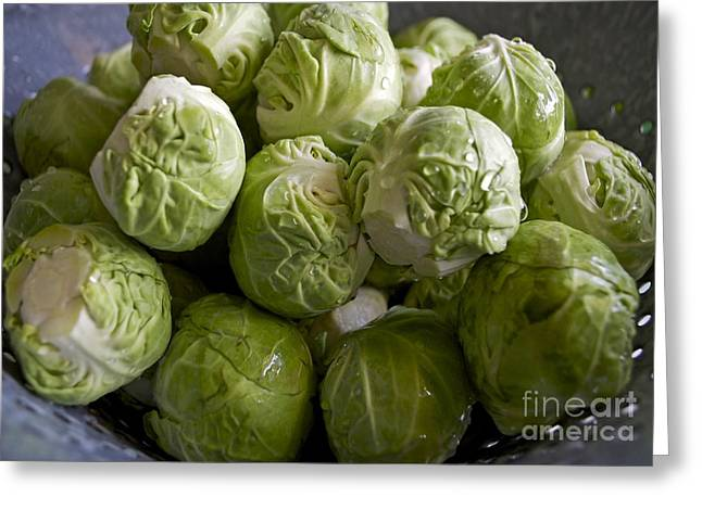 Brussel Greeting Cards - Brussel Sprouts Greeting Card by Gwyn Newcombe