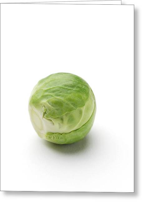 Brussel Greeting Cards - Brussels Sprout Greeting Card by Jon Stokes