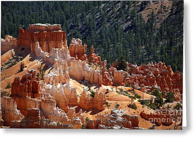 Mountain Trees Greeting Cards - Bryce Canyon  Greeting Card by Jane Rix