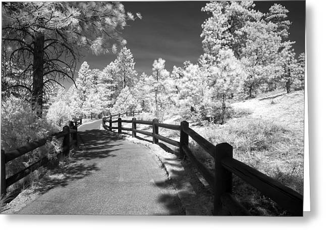 Infrared Greeting Cards - Bryce Canyon Trail Greeting Card by Mike Irwin
