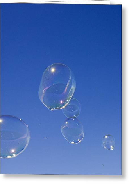 Bubbly Greeting Cards - Bubbles Greeting Card by Lawrence Lawry