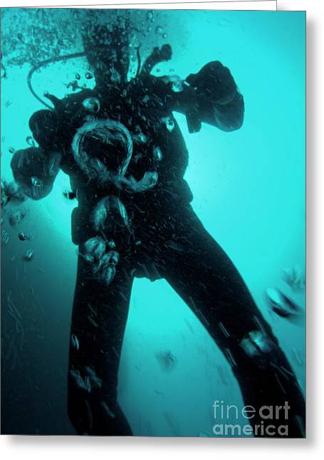 Scuba Diving Greeting Cards - Bubbles surrounding a scuba diver underwater Greeting Card by Sami Sarkis