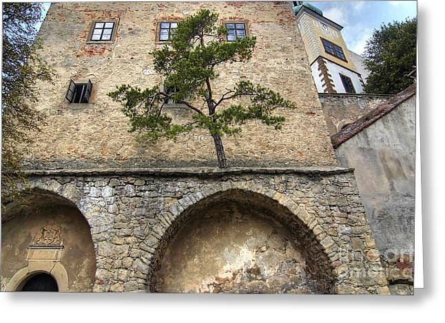 Moravia Greeting Cards - Buchlov castle Greeting Card by Michal Boubin
