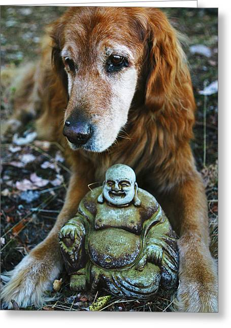 Buddha And The Old Boy Greeting Card by Lorraine Devon Wilke