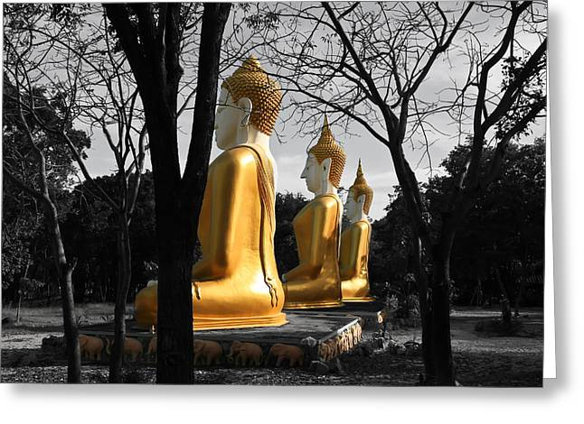Hua Hin Greeting Cards - Buddha In The Jungle Greeting Card by Adrian Evans