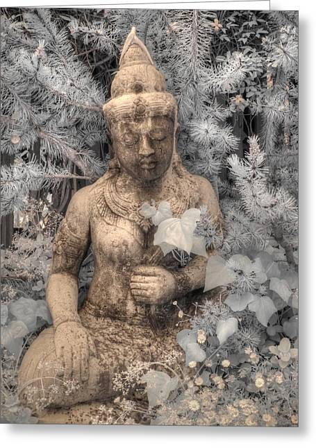 Buddha Nature Greeting Card by Jane Linders