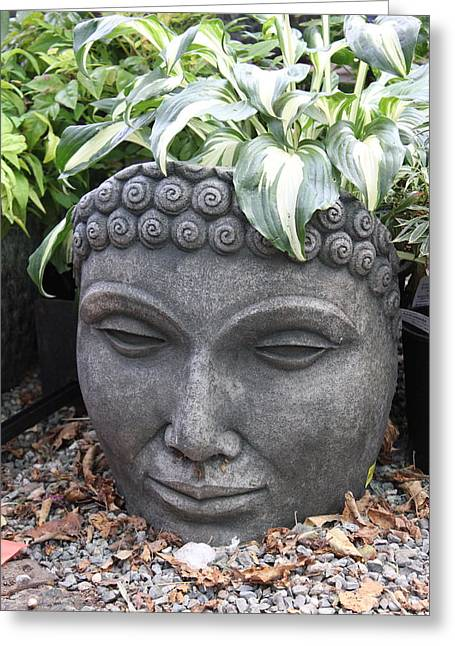 A Hot Summer Day Greeting Cards - Buddha on a hot summer island day Greeting Card by Brian Sereda