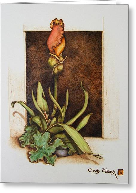 Water Garden Pyrography Greeting Cards - Budding Iris Greeting Card by Cynthia Adams