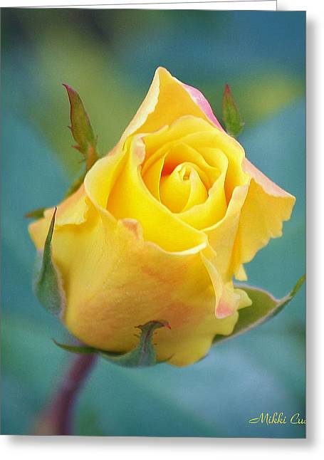Mikki Cucuzzo Greeting Cards - Budding Yellow Rose Greeting Card by Mikki Cucuzzo
