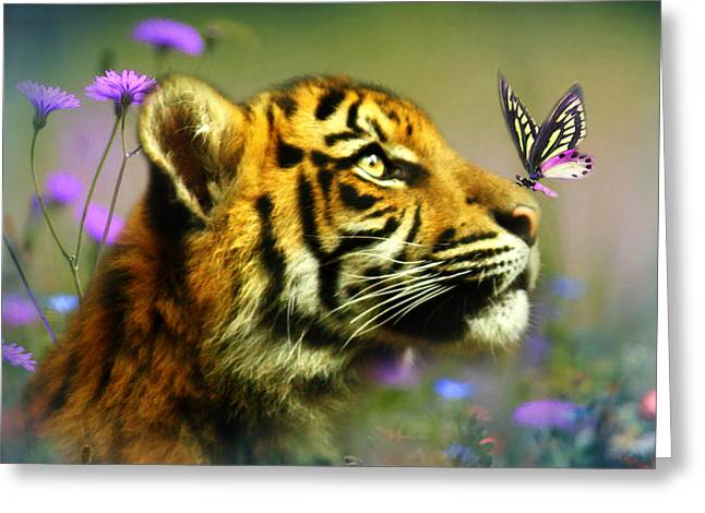 Cub Digital Art Greeting Cards - Buddy and the Butterfly Greeting Card by Trudi Simmonds