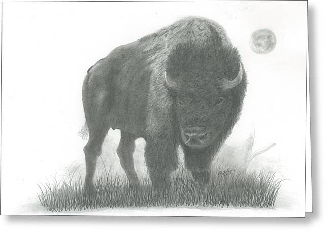 Buffalo   Greeting Card by EJ John Baldwin
