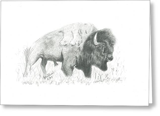 Buffalo 2 Greeting Card by EJ John Baldwin