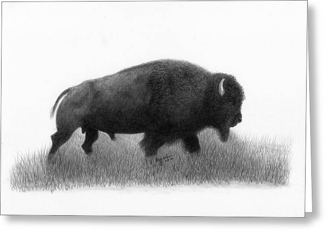 Buffalo 4 Greeting Card by EJ John Baldwin