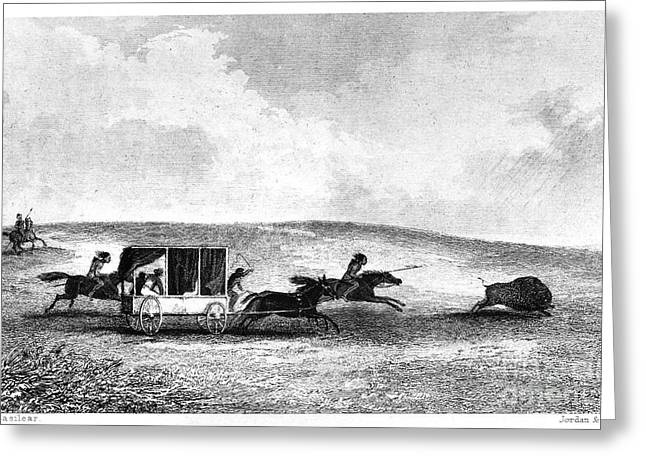 BUFFALO HUNT, 1841 Greeting Card by Granger