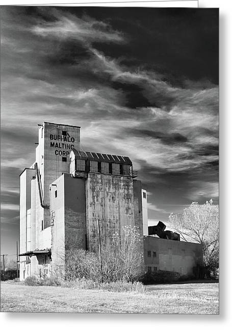 Maltings Greeting Cards - Buffalo Malting Corp Greeting Card by Guy Whiteley