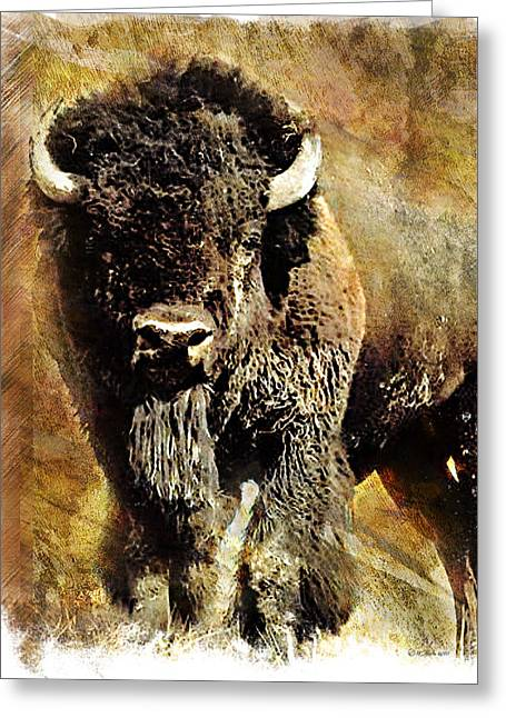Recently Sold -  - Fineartamerica Greeting Cards - Buffalo Poster Greeting Card by William Martin