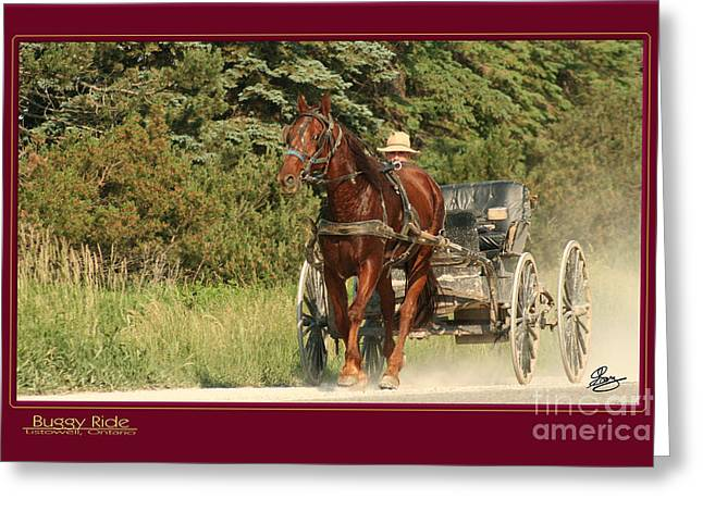 Menonite Greeting Cards - Buggy Ride Greeting Card by Gary Scott