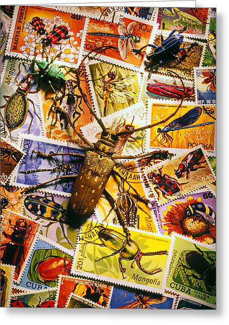 Stamp Greeting Cards - Bugs on postage stamps Greeting Card by Garry Gay