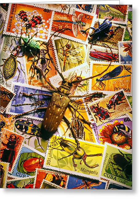 Bugs On Postage Stamps Greeting Card by Garry Gay