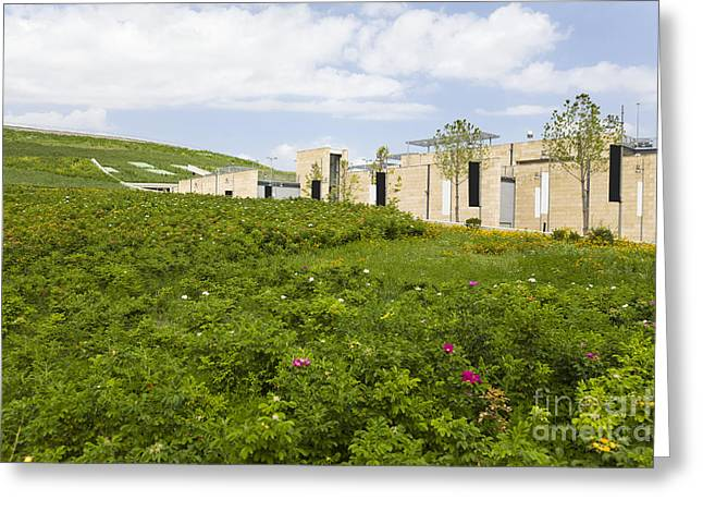 Building In Green Field Greeting Card by Roberto Westbrook