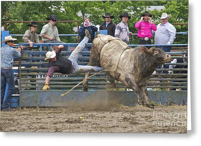 Roy Pioneer Rodeo Greeting Cards - Bull 1 - Rider 0 Greeting Card by Sean Griffin