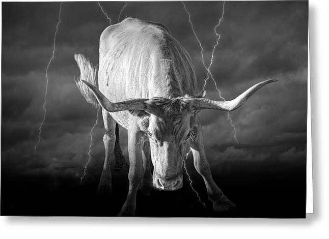 Lightning Photographs Greeting Cards - Bull Market Greeting Card by Randall Nyhof
