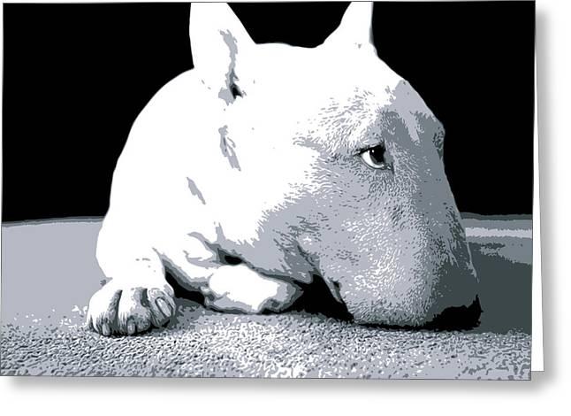 Bull Terrier White on Black Greeting Card by Michael Tompsett