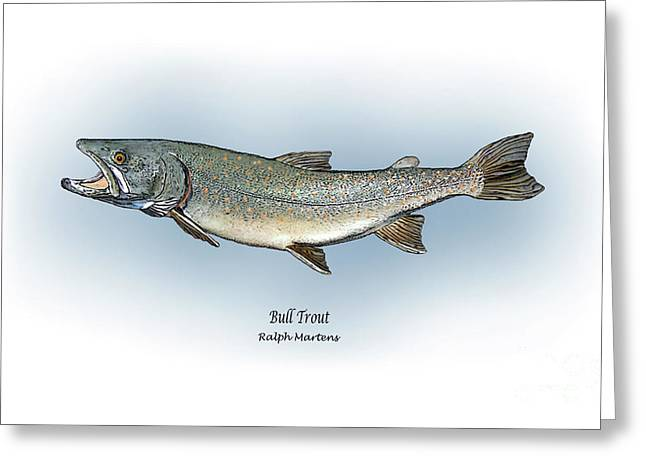 Trout Fishing Drawings Greeting Cards - Bull Trout Greeting Card by Ralph Martens