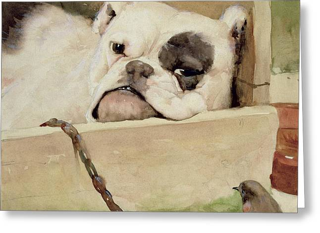 Bulldog Greeting Card by Cecil Charles Windsor Aldin