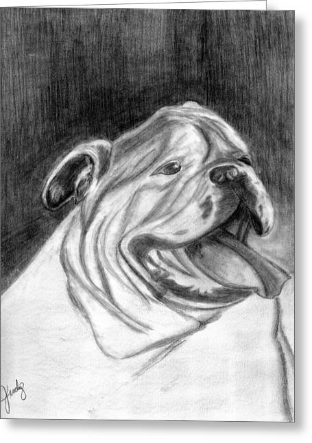 Black Greeting Cards - Bulldog in Pencil Greeting Card by Judy Moses