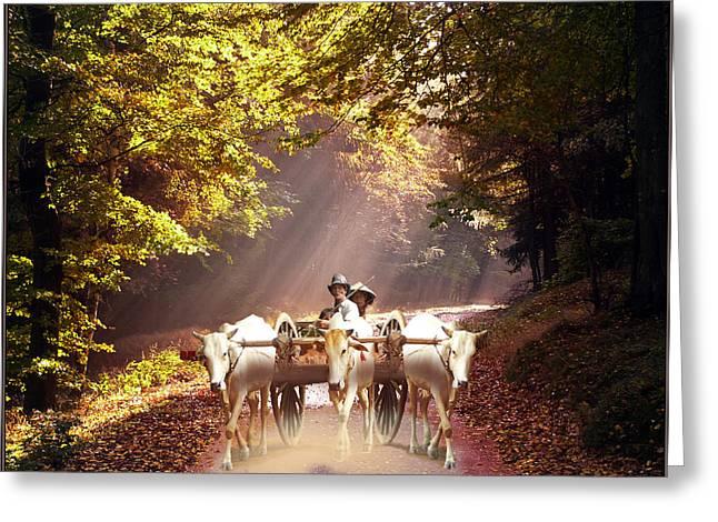 Bulls Pyrography Greeting Cards - Bulls ride Greeting Card by E  Kraizberg