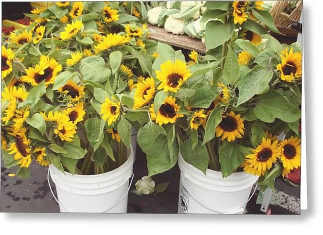 Family Pyrography Greeting Cards - Bunch of sun flower Greeting Card by Hiroko Sakai