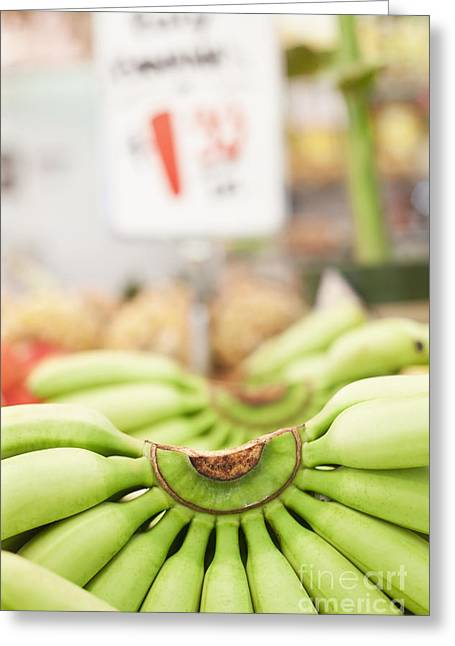 Grocery Store Greeting Cards - Bunches Green Bananas in a Market Greeting Card by Jetta Productions, Inc