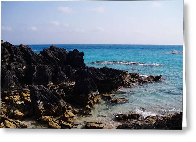 Www.eye4lifephotography.com Greeting Cards - Burmuda Greeting Card by Alicia Morales