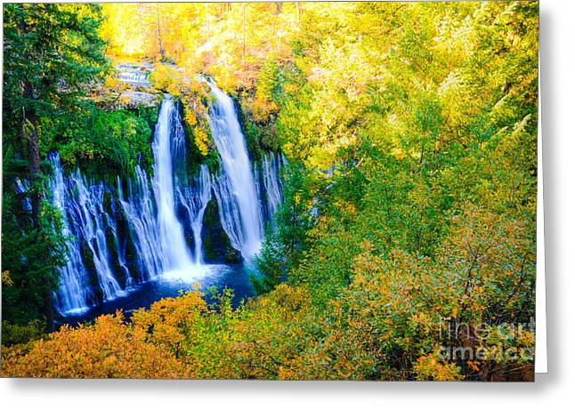 Fall Photographs Greeting Cards - Burney Waterfalls  Greeting Card by Kelly Wade