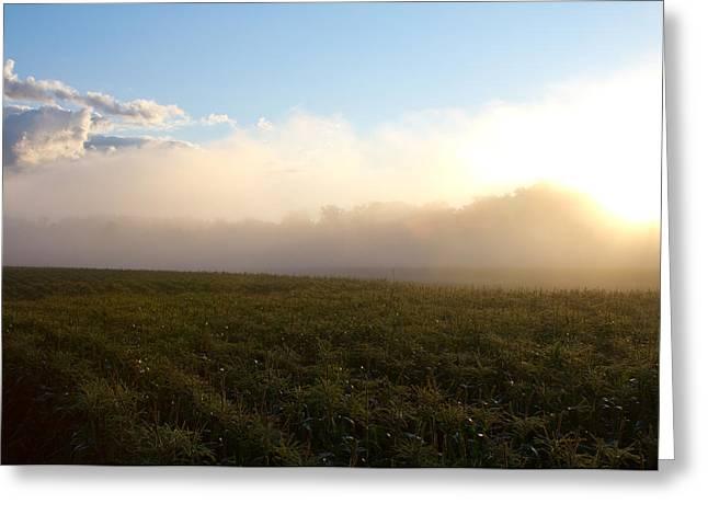 Sweet Corn Farm Greeting Cards - Burning Fog Greeting Card by Tim  Fitzwater