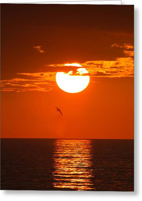 Atlantic Ocean Greeting Cards - Burning Sunset Greeting Card by Andres Leon