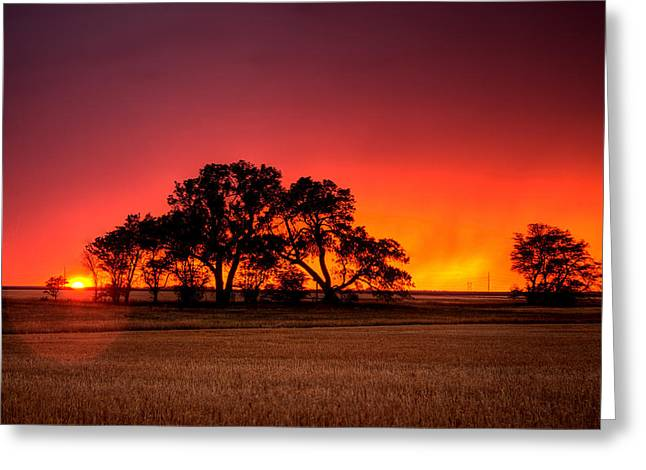 Prairies Greeting Cards - Burning Sunset Greeting Card by Thomas Zimmerman