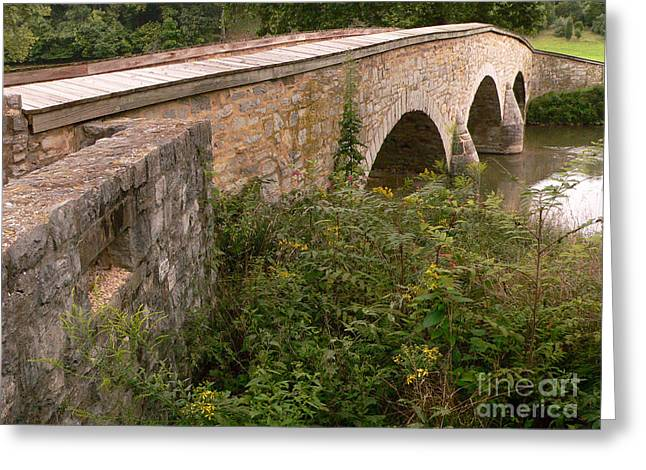 Ambrose Burnside Greeting Cards - Burnside Bridge in September Greeting Card by David Bearden
