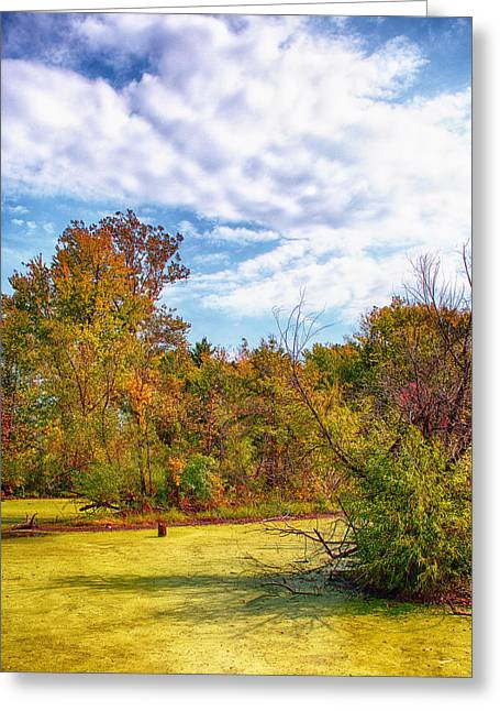 Ahden Knight Hampton Memorial Lake Greeting Cards - Busch Wildlife Swampy Autumn - 2 Greeting Card by Bill Tiepelman