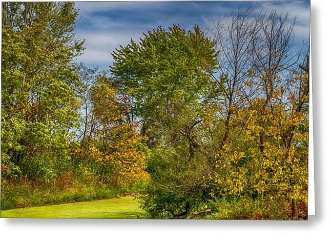 Busch Wildlife Swampy Autumn Greeting Card by Bill Tiepelman