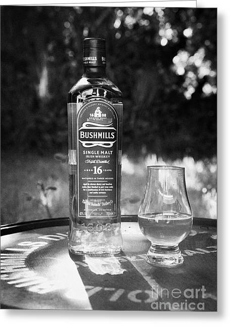 Sixteen Year Old Greeting Cards - Bushmills Irish Single Malt 16 Year Old Whiskey County Antrim Northern Ireland Greeting Card by Joe Fox