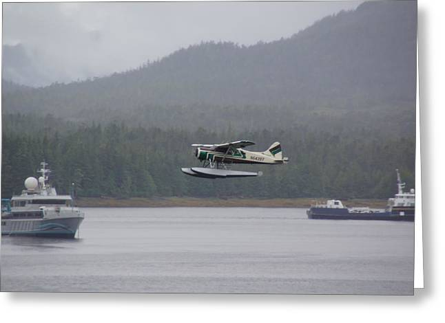 Are Plane Greeting Cards - Busy Harbor Greeting Card by Bj Hodges