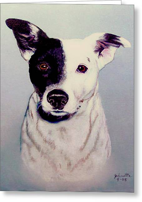 White Terrier Mixed Media Greeting Cards - Butch the Smooth Fox Terrier Greeting Card by  Bob and Nadine Johnston