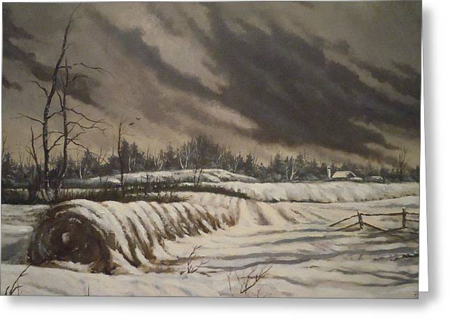 Butler Farm In Winter Greeting Card by James Guentner
