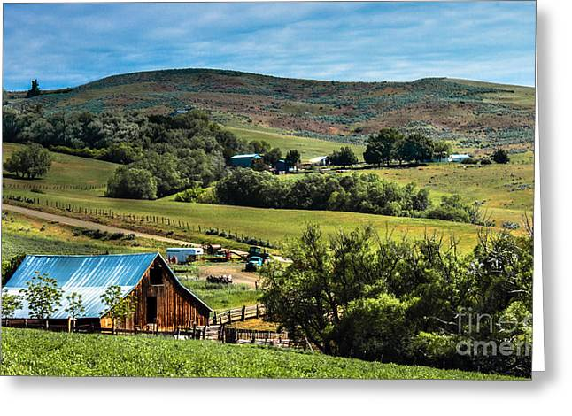 Haybale Greeting Cards - Butte Farm Greeting Card by Robert Bales
